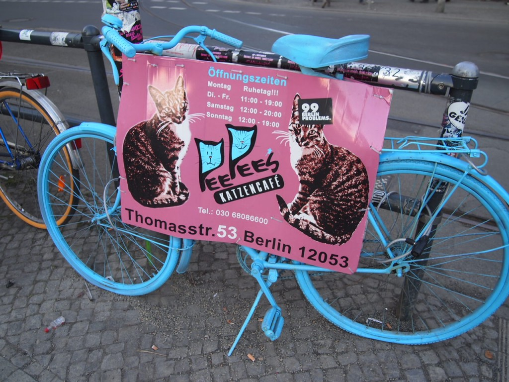 P3037620 1024x768 ネコ好き必見!ドイツにあるネコカフェがひと味違う。