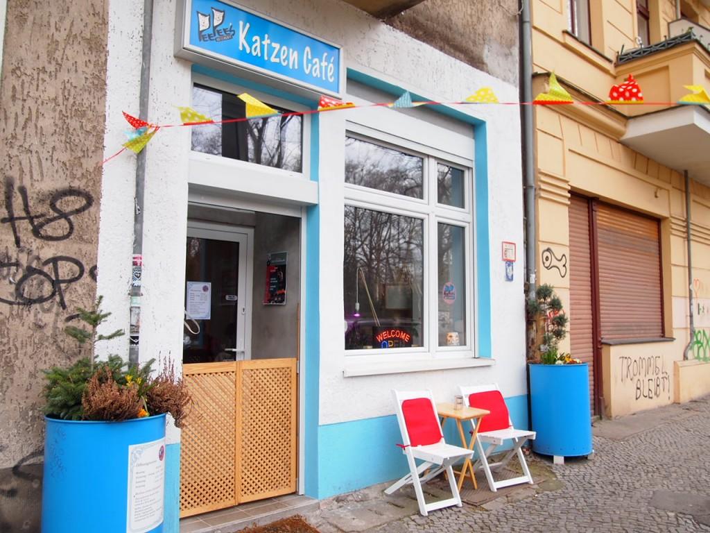 P3159252 1024x768 ネコ好き必見!ドイツにあるネコカフェがひと味違う。