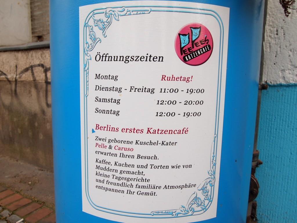 P3159255 1024x768 ネコ好き必見!ドイツにあるネコカフェがひと味違う。