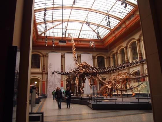 始祖鳥が見れる数少ないベルリン自然史科学博物館がすごい!