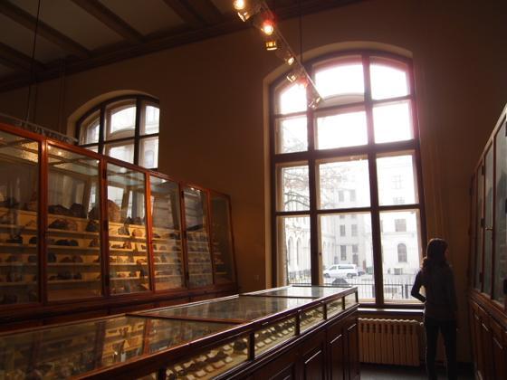 th P2266408 始祖鳥が見れる数少ないベルリン自然史科学博物館がすごい!