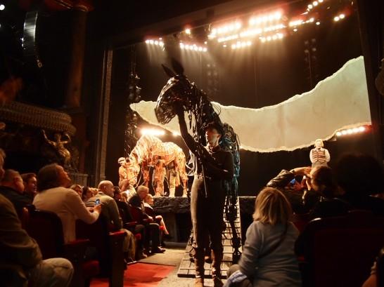 P6255824 546x409 ベルリン演劇「戦火の馬」、幕後に衝撃の展開が待っていた!?