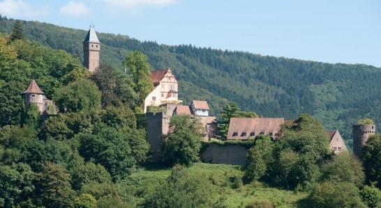 SchlosshotelHirschhorn 546x299 憧れの中世を体験!ドイツ厳選の泊まれる14の古城ホテル!