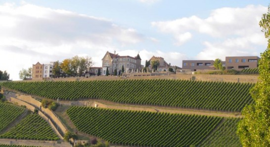 SchlosshotelSteinburg 546x299 憧れの中世を体験!ドイツ厳選の泊まれる14の古城ホテル!
