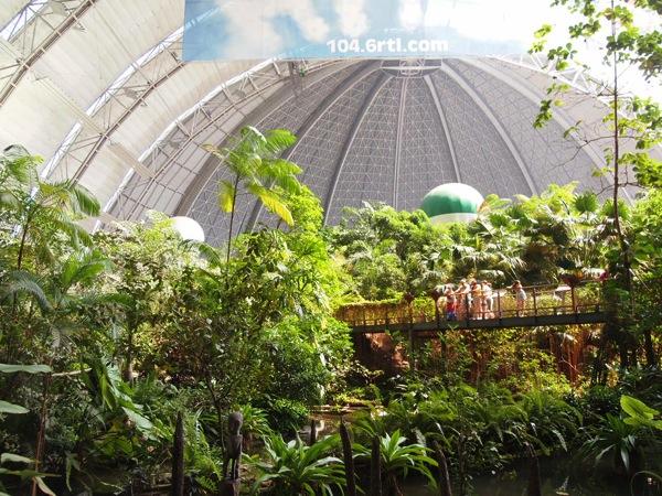 P5173445 ドイツのプール楽園すぎ!混浴温泉のある巨大プール「トロピカルアイランド」に行ってみた!