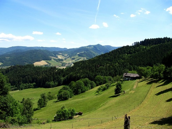 black forest 526212 640 ドイツおすすめ観光地ベスト30…世界1番人気はネズミの国!