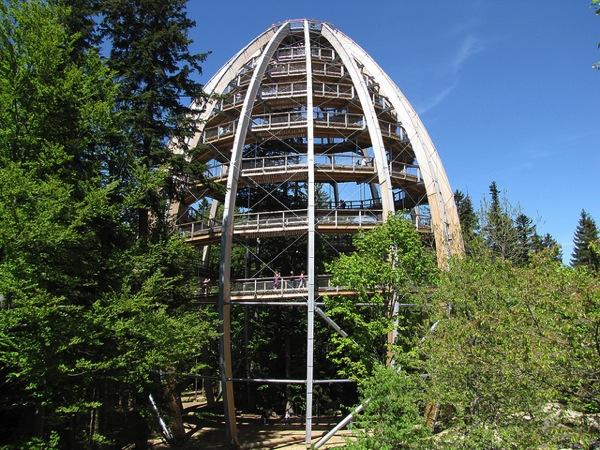 TreeTopWalk Frank Hamm カラフルすぎる家に空キャンプ!世にも奇妙なドイツの観光スポット8選