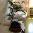 heidelberg-hostel