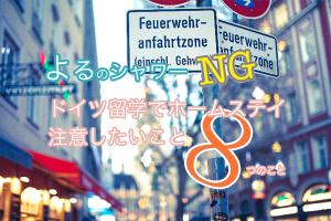 36a4bff2434a9336ee2b9bbc53ff388e 300x200 初めてのドイツ留学で必ず確認したい!留学を成功させる9ステップ!