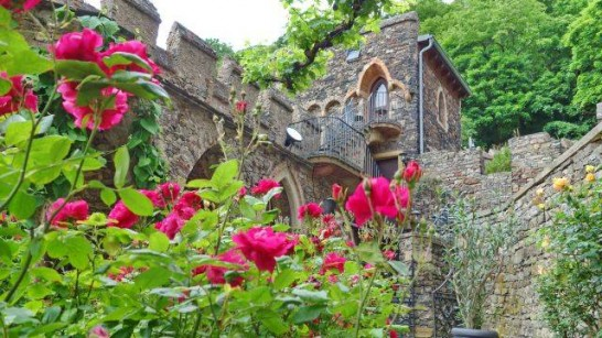 12931222 1116459755040882 6971658242778105126 n 546x307 日本語OK!ドイツの古城で結婚式を挙げるならラインシュタイン城で憧れが実現!