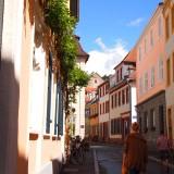 P8142297 160x160 古城が作る街、南ドイツの学術都市ハイデルベルク