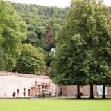 P8163565 160x160 古城が作る街、南ドイツの学術都市ハイデルベルク