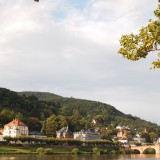 P8163917 160x160 古城が作る街、南ドイツの学術都市ハイデルベルク