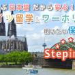stepin_maintop