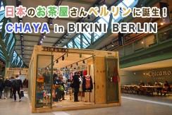 ビキニベルリンに日本のお茶屋さんが誕生予定!取材したら衝撃の結果に!
