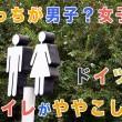 toilette_top.jpg